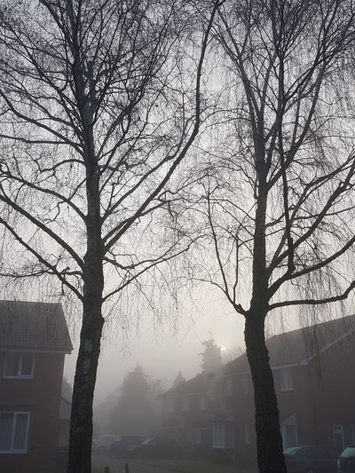 Fog in london.