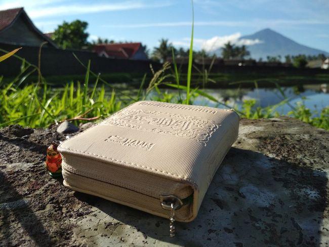Matryoshka Garut Indonesia Photography  Vinichka No People Day Close-up Outdoors