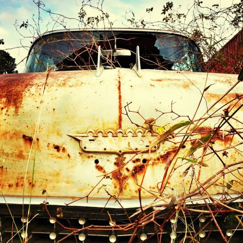 A rusted-out '58 Cadillac I spotted last weekend in Bellville, TX