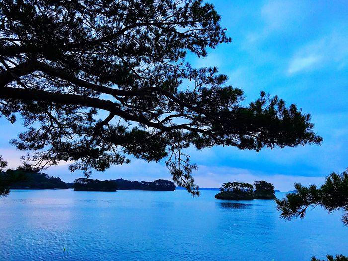 Travel Photography Morning Walk Sky Sky_collection Morning Warking♡ Relaxing Blue Sea And Sky Japan Photography Miyagi Sony A6000 松島 綺麗だったなぁ 癒されました 日の出は再チャレンジしよう