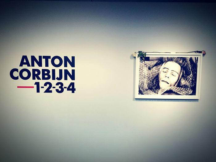Co Berlin Anton Corbijn David Bowie Rip Art Rose🌹 Berlin Exibition