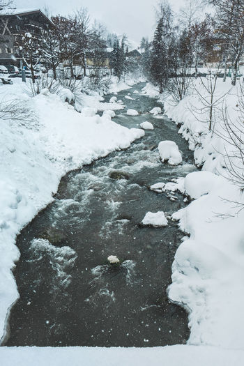 Snow Winter Cold Temperature No People Tree Nature White Color Beauty In Nature Day Covering Frozen Tranquility Plant Scenics - Nature Tranquil Scene Water Bare Tree Downloading Outdoors Flowing Snowing Ditch