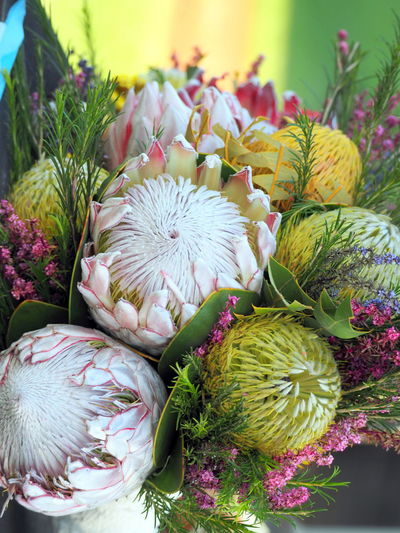 Close-up of torch protea flowers bouquet