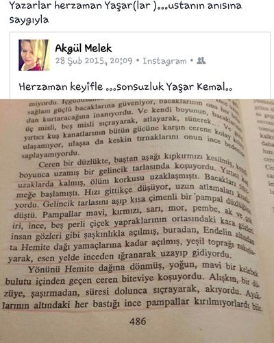 Usta Yazarlar ölümsüzdür Yaşar Kemal