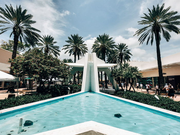 Pool Piscina Lincon Road Linconrd EUA USA Miami Floroda Trip Travel Tree Water Water Slide Palm Tree Swimming Pool Park - Man Made Space Fountain Swimming Sky The Street Photographer - 2018 EyeEm Awards Stay Out