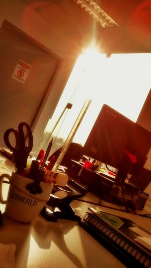 The sun came today to my window... 😊🌞 Check This Out Sunlight Sunlight And Shadow Hello World Rays Of Light What Nature Gives Us Grateful Holiday POV Creative Light And Shadow