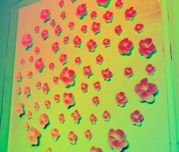 Paper Plumeria! Paper Flowers Indoors  Bright Colors Abstract Colorful Creative Editing EyeEm Gallery Cell Phone Photography
