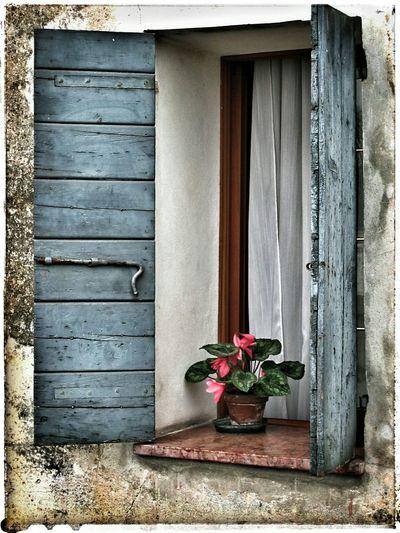Piazzola sul Brenta, finestra In Piazzola Sul Brenta Veneto Ville Palladiane