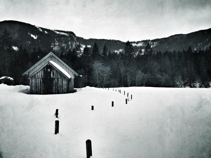 AMPt Community Winterskies EyeEm Best Shots AMPt_Nature NEM Black&white Monochrome Countryside