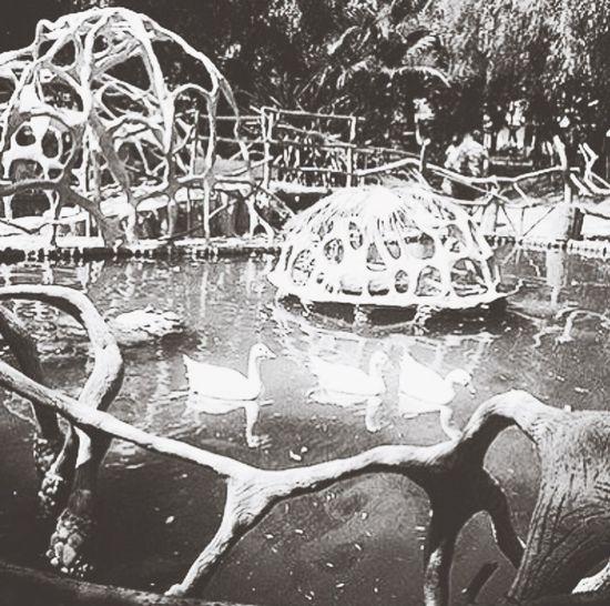 First Eyeem Photo #parque Botánico