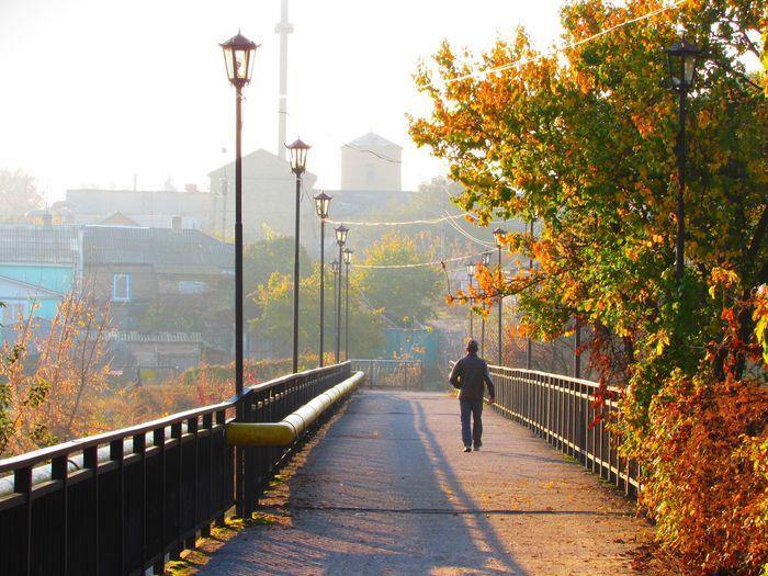 Rear view of man walking on railing during autumn