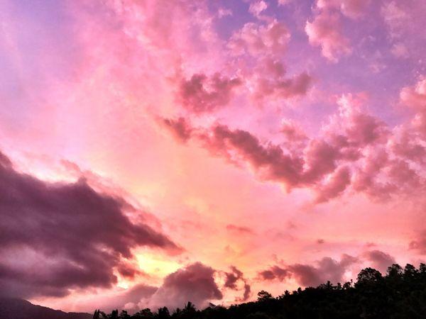 奇幻的雲彩 Sky Beauty In Nature Pink Color Cloud - Sky Sunset Scenics - Nature Dramatic Sky Tranquil Scene Tranquility Idyllic No People Nature Magenta Tree Low Angle View Silhouette Orange Color Outdoors Purple Awe