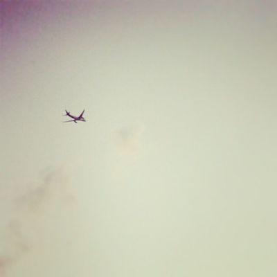 flying object Jets Airplane Aeroplane Sky Skyline Instanusantara Instanesia Instanusantarabali Igers Instadaily Instagood Bali INDONESIA LangitbaliPhotoworks