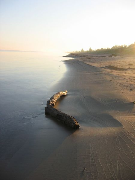 Sunrise Pristine Beach Calm Waters Driftwood and Patterns Etched in the Sand Pinery Provincial Park Life Is A Beach