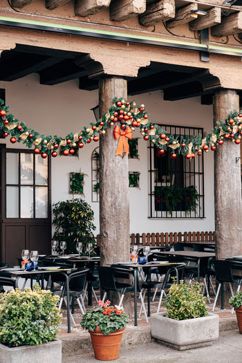 Potted plants hanging outside building