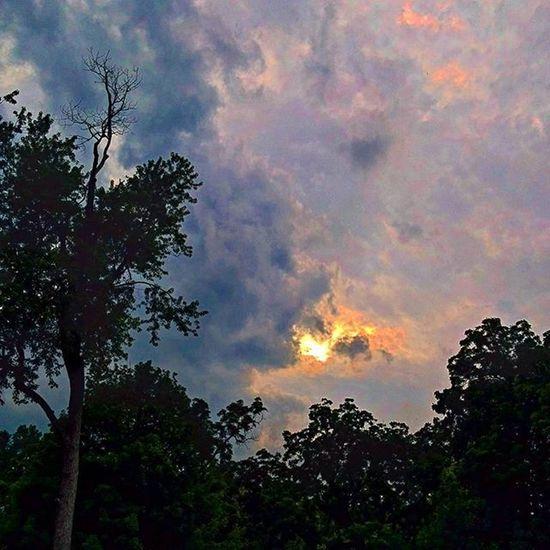 Virginia Berryville Rosemont Clouds wolken