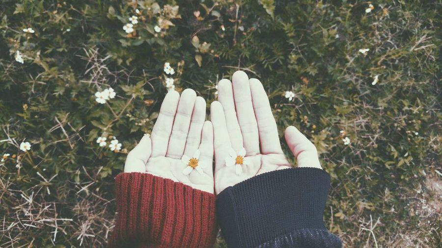 Blossominhand