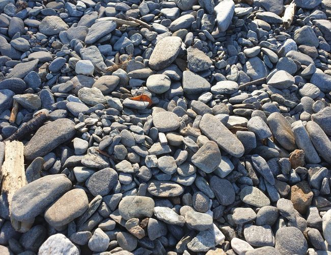 pebble brach