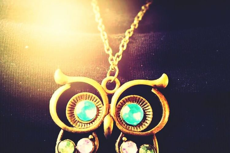 Owl Necklace Lovely