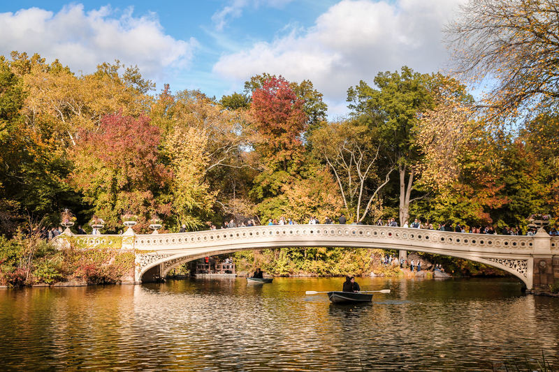 boats in central park in autumn New York City NYC NY Metropolis Urban Landscape Fall Autumn Central Park Urban Park Iconic Park Water Pond Lake Urban Lake Boat Boats Sunny Day Clear Sky Sunset Leisure Activity Relaxing Happiness Rowing Love Architecture
