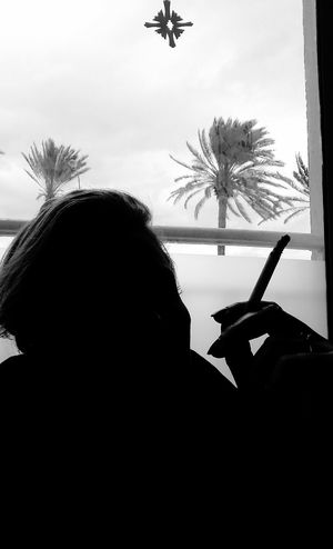Palm Tree Silhouette One Woman Only Indoors  One Person Winter Cold Temperature December 2016 Beach Sky 3XSPUnity Contre-jour Shot