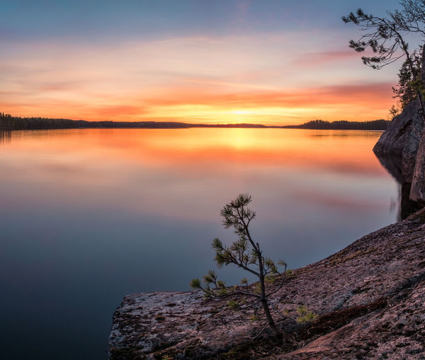 Scenic sunset landscape with peaceful lake and tree at summer evening in Finland Sky Water Beauty In Nature Sunset Tranquil Scene Tranquility Scenics - Nature Cloud - Sky Sea Nature Tree Idyllic Orange Color Rock - Object No People Non-urban Scene Horizon Over Water Outdoors Finland Tranquility Landscape Beauty In Nature Mood Peaceful Evening Light