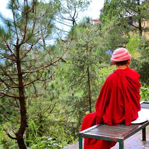 Dharamshala India Tibetanrefugee Free Tibet