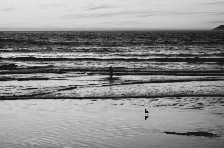 Never gets old...to me Monochrome Photography California Beach Sea Nature Surf Check This Out Blackandwhite Water Silhouette Beauty In Nature Horizon Over Water Outdoors Ocean One Person EyeEm Black And White Travel Destinations Vacations Taking Photos EyeEm Gallery Real People Eye4photography  EyeEm Nature Lover Blackandwhite Photography