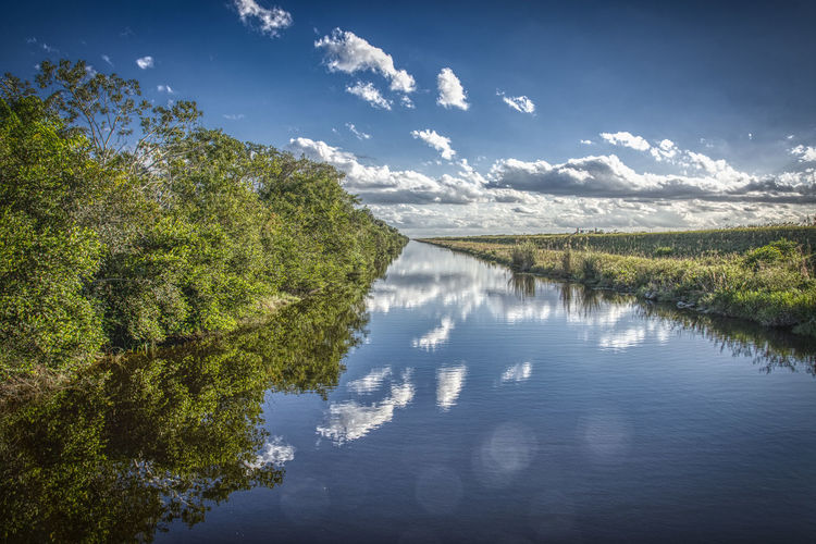 Water Reflection Tree Plant Tranquility Tranquil Scene Beauty In Nature Scenics - Nature Sky Cloud - Sky Nature Lake Day No People Waterfront Non-urban Scene Outdoors Idyllic Everglades  Everglades National Park Canal Dike Reflections In The Water 17.62°