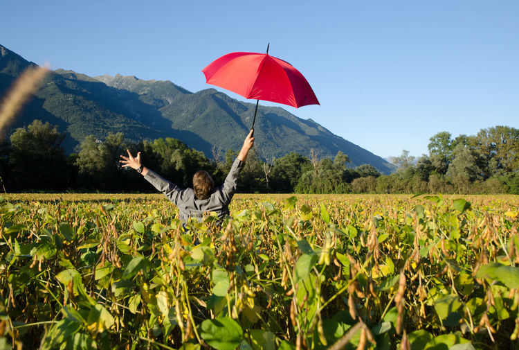 Elegant business man with an umbrella in the agriculture field in Switzerland. Adults Only Agriculture Arms Raised Business Businessman Colorful Corporate Business Day Field Freedom Landscape Man Mountain Nature One Man Only One Person Outdoors Outstretched Arms Protection Sky Blue Success Suit Swiss Alps Tranquility Umbrella