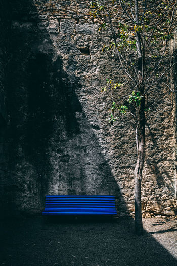 An Artistic Prespective. Absence Architecture Bench Blue Blue Sky Day Empty Growth Land Nature No People Outdoors Park Park Bench Plant Seat Sunlight Tree Tree Trunk Trunk Wall Wall - Building Feature