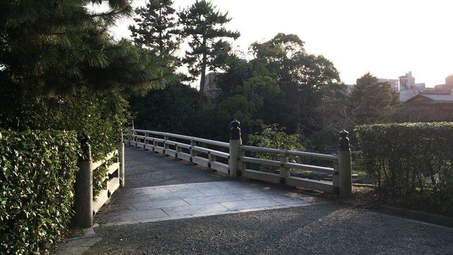 Kyoto Garden Kyoto, Japan Nature