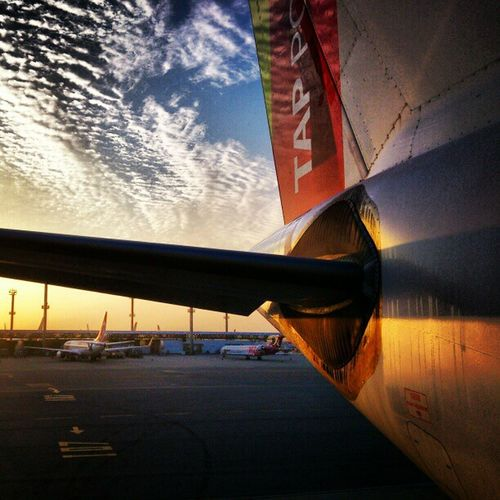 Outra da TAP. Sunset Gruairport Airplane