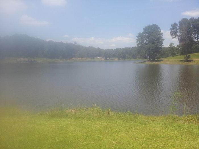 Lunch Break View Lake View