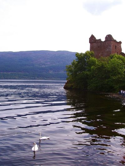 Scotland Lake Ness Swam UrquhartCastle Reflections In The Water Showcase March Bucolic Landscape Loch Ness Quietness Travel Photography Enjoying The View Beauty In Nature Learn And Shoot: Balancing Elements Learn & Shoot: Balancing Elements Landscapes With WhiteWall The Great Outdoors - 2016 EyeEm Awards