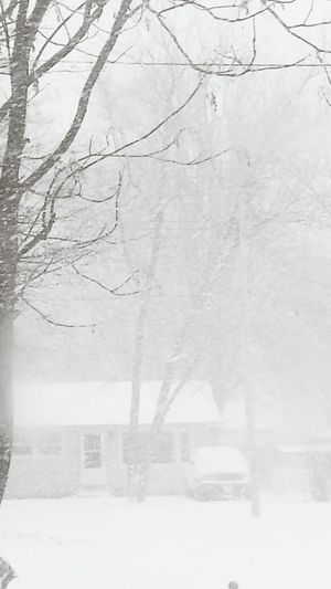 Winter Wonderland Beautifulsnow Great Views Snow ❄