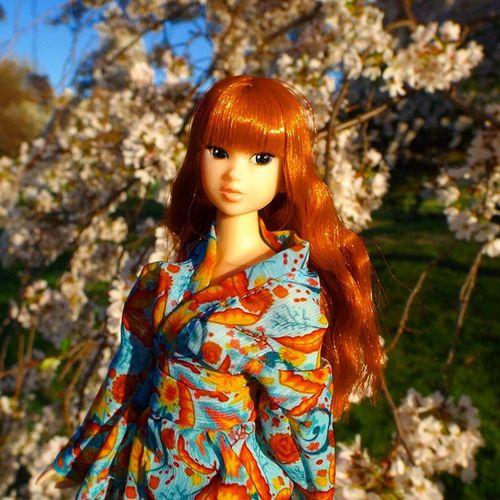 Momoko , enjoying the lovely Spring sunshine and Cherryblossoms .... *********** Doll Dolls Dollstagram Dollphotogallery DollPhotography Toy Toys Toygroup_alliance Toyartistry Toyphotogallery Toyphotography Toyunion Toyslagram Toyplanet Toycrewbuddies Toycrewbuddiesjp Sekiguchi Momokodoll Fanvote Japan Nippon Sakura hanami redhair redhead