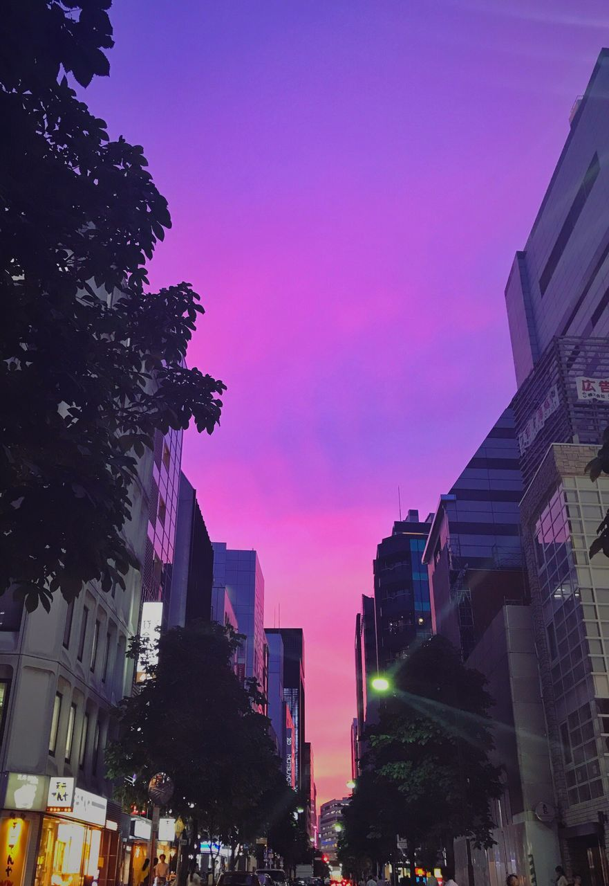 architecture, building exterior, built structure, illuminated, tree, night, city, sky, low angle view, outdoors, no people, skyscraper, pink color, modern, clear sky