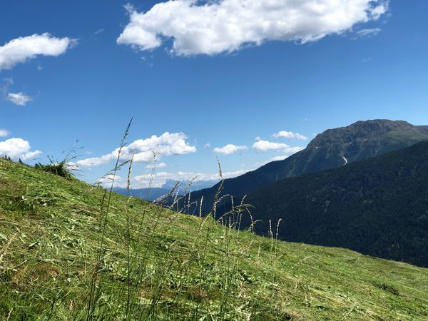 Italia Italy Italien South Tyrol Alto Adige Südtirol Ultental Sky Plant Beauty In Nature Cloud - Sky Mountain Scenics - Nature Growth Green Color Tranquility Nature Land Day Landscape Tranquil Scene No People Field Environment Sunlight Grass