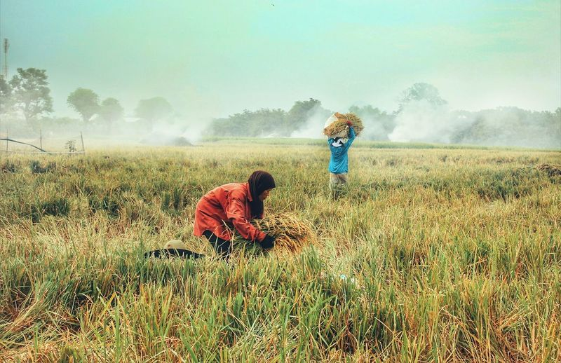 Two People Field Outdoors Togetherness Grass Agriculture Full Length Growth Nature Day People Real People Working