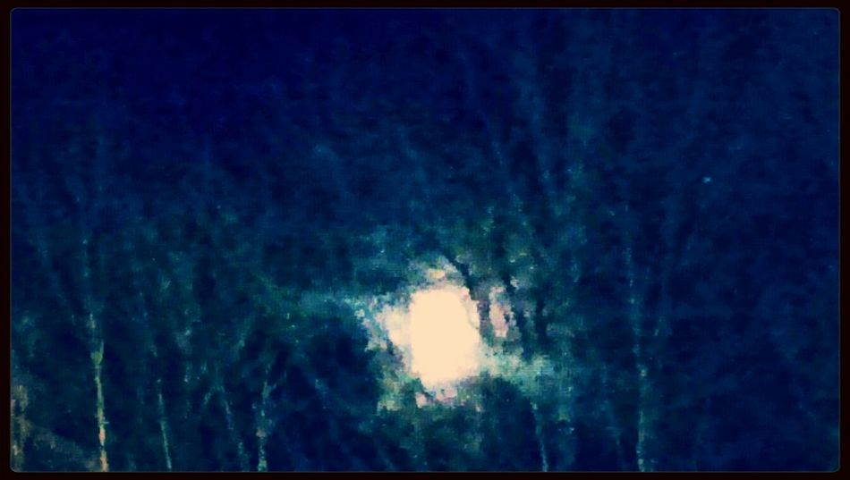 Sting Moonlight Nightphotography Check This Out