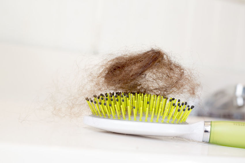 A hairball with hairbrush/clip. Horizontal. Bathroom Brush Cleaning Concept Conceptual Hair Hair Clip Hair Loss Hair Treatment Hairball Hairbrush Sink White