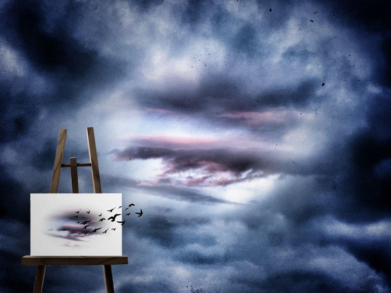 cloud - sky, dramatic sky, sky, weather, no people, outdoors, sunset, storm cloud, day, nature, bird