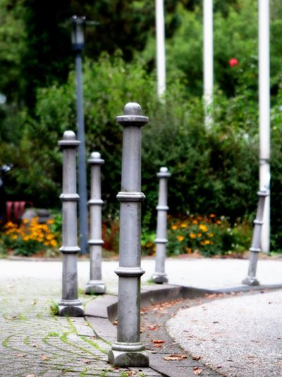 Iron Separation Column Separation Pillars Anchored Architectural Column Architecture Built Structure Close-up Columns Columns And Pillars Day Demarcation Focus On Foreground Metal Nature No People Outdoors Pillars Separated Separation Street Light Street Photography Streetphotography Tree