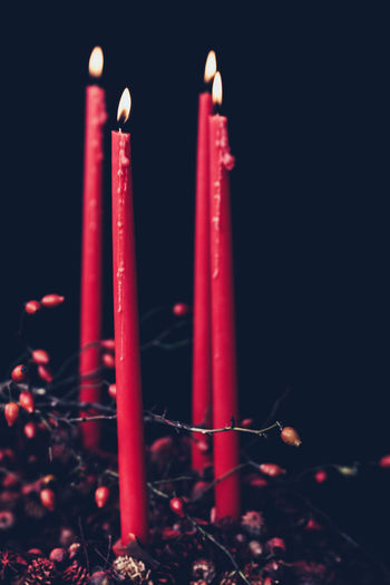 christmas decoration with candles Flame Candle Fire Red Burning Religion Close-up Dark Black Background Spirituality No People Advent Christmas Christmas Decoration Adventskranz Hagebutten Belief Seasonal Winter DIY