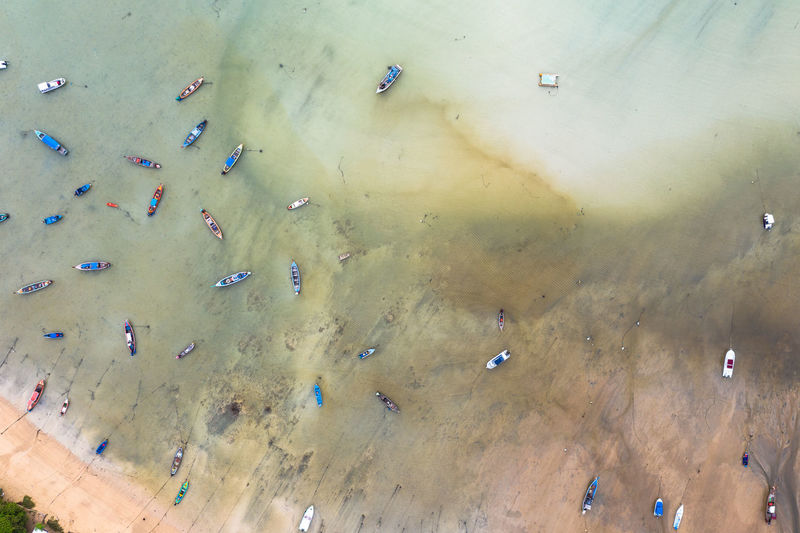 High angle view of group of people in the sea