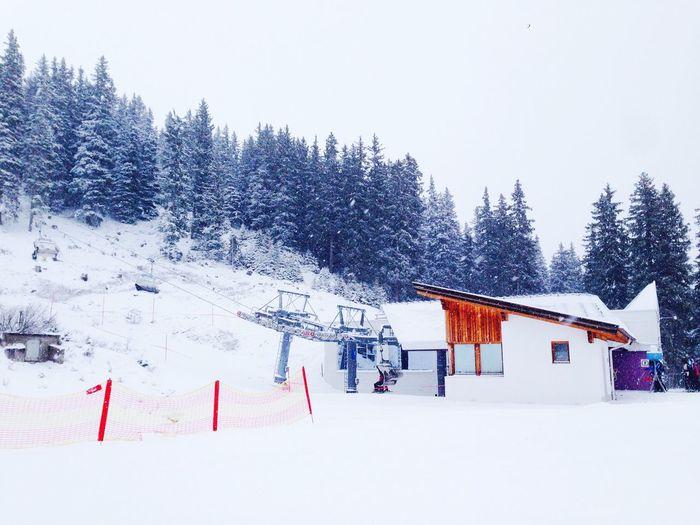 Winter Snow Skiing White Nature Cabin Traveling Season  View