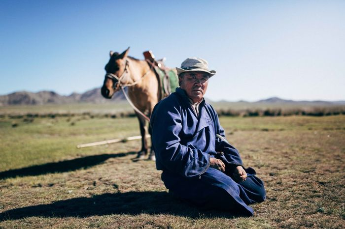 MAN WITH HORSE ON THE FIELD