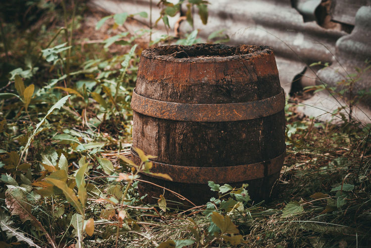 Old rotten cask