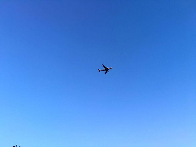 Sky Sky Plane Planes Uçaklar Istanbul Turkey Istanbul Türkiye Turkey Bulut